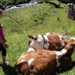 Urlaubstipps: Urlaub auf dem Bauernhof