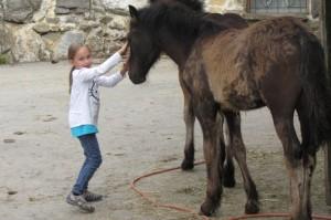 Kinder lieben Tiere - ganz besonders Pferde